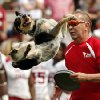 A dog act performs at halftime during the Spring College Football Game of the University of Oklahoma Sooners (OU) at Gaylord Family-Oklahoma Memorial Stadium in Norman, Okla., on Saturday, April 12, 2014. Photo by Steve Sisney, The Oklahoman