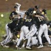 Vanderbilt players celebrate after Vanderbilt defeated Virginia 3-2 in the deciding game of the best-of-three NCAA baseball College World Series finals in Omaha, Neb., Wednesday, June 25, 2014. (AP Photo/Nati Harnik)