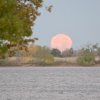 Early morning moon at Lake Hefner on 11-17-13 - Photo by Ruthann Lach