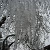 WINTER / COLD / WEATHER / ICE STORM 2007: Icicles hang near a house in northwest Oklahoma City. BY MONTIE SCOTT, MYNEWSOK CONTRIBUTOR ORG XMIT: 0712111559290848