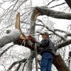 WINTER / COLD / WEATHER / ICE STORM 2007: Mark Kelly of Tulsa perches atop a ladder with a chainsaw to remove a broken limb before it falls on its own. (Photo by Mel Root)