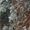 WINTER / COLD / WEATHER / ICE STORM: Mike Reano from the Aspludh Tree Expert Company work in the Smiling Hills neigboorhood on Monday December 10, 2007, in Edmond, Okla. The company assisted Edmond Electric in clearing trees from electric lines. By Sarah Phipps, The Oklahoman ORG XMIT: KOD