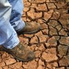 Fred Reuter stands on the dry,cracked earth in a pond on his farm in El Reno, Okla., Thursday, Aug. 16, 2012. Photo by Sarah Phipps, The Oklahoman