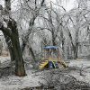 WINTER / COLD / WEATHER / ICE STORM: Ray Trent Park near Interstate 40 and Sunnylane in Del City received heavy damage to the park\'s trees from the ice Monday afternoon, Dec. 10, 2007. By Jim Beckel, The Oklahoman. ORG XMIT: KOD