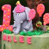 A birthday cake by Ingrid\'s Kitchen for Malee\'s first birthday celebration at the Oklahoma City Zoo, Sunday, April 15, 2012. Photo by Garett Fisbeck, For The Oklahoman