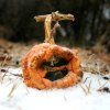 WINTER, COLD WEATHER, ICE STORM, PUMPKIN: A jack-o-lantern is covered with ice in Logan County , Okla. Dec. 09, 2007. BY STEVE GOOCH, THE OKLAHOMAN. ORG XMIT: KOD