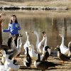 Ellie Wofford and granddaughter Amanda Melton, 8, feed ducks at the duck pond in Brandt Park on the campus of the University of Oklahoma in Norman, Oklahoma on Tuesday, December 4, 2007. Photo By STEVE SISNEY, The Oklahoman