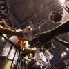 Oklahoma City\'s Nazr Mohammed signs autographs for fans before the start of Game 2 in the second round of the NBA playoffs between the Oklahoma City Thunder and the L.A. Lakers at Chesapeake Energy Arena on Tuesday, May 15, 2012, in Oklahoma City, Oklahoma. Photo by Chris Landsberger, The Oklahoman
