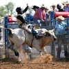 Caleb Claybrook, Highlandville, Mo. competes in the bull riding on day 4 of the International Finals Youth Rodeo on Wednesday, July 10, 2013 in Shawnee, Okla. Photo by Steve Sisney, The Oklahoman