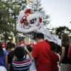 Lion dancers from St. Andrews Dung-Lac perform during the Tet Trung Thu Moon Festival at Will Rogers Park amphitheater Sunday, September 29, 2013. Photo by Doug Hoke, The Oklahoman