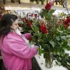 Photo -  Mirla Velez designs an arrangement of roses for Valentine's Day at Capitol Hill Florist in Oklahoma City. Photo By Steve Gooch, The Oklahoman   Steve Gooch -  The Oklahoman