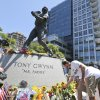 Members of the San Diego Chargers place flowers at the base of the Tony Gwynn
