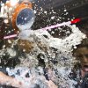 Photo -   Washington Nationals first baseman Adam LaRoche (25) is doused as he is interviewed by a television reporter, right, during the Nationals' celebration after clutching the National League East division title following their baseball game against the Philadelphia Phillies in Washington, Monday, Oct. 1, 2012. (AP Photo/Manuel Balce Ceneta)