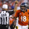 Photo -   Denver Broncos quarterback Peyton Manning (18) argues with back judge Steve Freeman (133) during the first quarter of an NFL football game against the Pittsburgh Steelers, Sunday, Sept. 9, 2012 in Denver. (AP Photo/David Zalubowski)