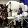 GROOM / GROOMING: Karen Cuba snips away at her standard poodle Goliath\'s fur while her friend Gobind Narasimhan watches during the Oklahoma City Dog Show at the Cox Convention Center in Oklahoma City Thursday, June 25, 2009. Photo by Ashley McKee, The Oklahoman