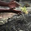 A man pours earth onto a grave where an unclaimed body of the garment factory building was buried on Wednesday May 1, 2013 in Dhaka, Bangladesh. Several hundred people attended a mass funeral in a Dhaka suburb for 18 unidentified workers who died in the building collapse last week last week in the country\'s worst industrial disaster, killing at least 402 people and injuring 2,500. The bodies, rotting in the spring heat, were brought to the graveyard on the back of a flatbed truck.(AP Photo/Wong Maye-E)