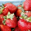Photo - Fresh strawberries were available on opening day at Edmond's Farmers Market at Festival Market Place.
