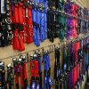 Collars and leashes are displayed on the wall at A1 Pet Emporium in Oklahoma City. Photo by Nate Billings, The Oklahoman NATE BILLINGS