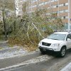 WINTER / COLD / WEATHER / ICE STORM / DAMAGE / AFTERMATH / SPORT UTILITY VEHICLE: An SUV drives around a fallen tree at NW 5th and Robinson in Oklahoma City , Okla. Dec. 10, 2007. BY STEVE GOOCH, THE OKLAHOMA. ORG XMIT: KOD