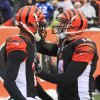 Photo - Cincinnati Bengals quarterback Andy Dalton (14) congratulates wide receiver A.J. Green (18) after Green caught a 9-yard touchdown pass from Dalton in the second half of an NFL football game against the Indianapolis Colts, Sunday, Dec. 8, 2013, in Cincinnati. (AP Photo/Tom Uhlman)