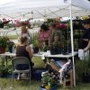 Members of the community look for deals on flowers during the Annual Garden Festival at Will Rogers Park June 11, 2011. Photo by Ashley R. West, The Oklahoman