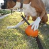 Don\'t touch my pumpkin