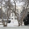The White House and the snow covered South Lawn are seen through snow dusted trees, Thursday, Jan. 24, 2013, in Washington. A light snow made commuting more difficult in the Washington area. The U.S. Office of Personnel Management says federal agencies are open, but employees have the option to take unscheduled leave or unscheduled telework. (AP Photo/Carolyn Kaster)