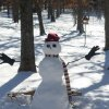 Snowman made by Hilary Webb, Choctaw OK. December 1, 2006 Community Photo By: Hilary Webb Submitted By: Dana, choctaw