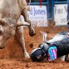 (#698) Cody Rollinson of Mesquite, TX. lands face first in the dirt after being ejected from this bull. He was not injured. The 19th annual International Finals Youth Rodeo (IFYR) continued Tuesday with morning go-rounds in the 11 events. More than 900 cowboys and cowgirls from across the United States, including Hawaii, compete in this week-long event at the grandstand located in the Heart of Oklahoma Exposition Center in Shawnee. July 12, 2011. Photo by Jim Beckel, The Oklahoman