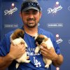 Photo - In a photo provided by the Los Angeles Dodgers, Los Angeles Dodger third baseman Adrian  Gonzalez holds puppies used in a video June 17, 2014, at Dodger Stadium in Los Angeles. The video was part of a promotion to get people to vote for baseball players for the All-Star Game in Minneapolis on July 15. (AP Photo/Los Angeles Dodgers)