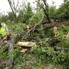 Layton Goad uses a chain saw to cut up a large tree that fell across SE 89 near Hiwassee Tuesday, May 11, 2010. Goad works for Cleveland County, District 1 commission maintenance. Photo by Jim Beckel, The Oklahoman.