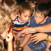 Trinity School pre-school students Jonathon Angell, Julie Angell, Jacob Thompson and Zach Villa learn about fireflies in their Summer School class, BUGS, BUTTERFLIES AND BALLOONS. Community Photo By: Debbie Yoeckel Submitted By: Debbie, Oklahoma City