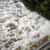 Hailstones cover the sidewalk at Express Ranch in Yukon, Okla.,Tuesday, Feb. 9, 2009 . PHOTO BY SARAH PHIPPS, THE OKLAHOMAN