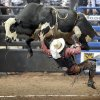 Chelse Day of Tahlequah, Okla., falls off Wacky Weed during the Xtreme Bulls Tour at the State Fair Arena in Oklahoma City, Saturday, September 26, 2009. Photo by Bryan Terry, The Oklahoman