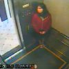 This still image taken from a security video was released on Feb. 13, 2013, by the Los Angeles Police Department in connection with the search for 21-year-old missing Canadian tourist Elisa Lam. In this image, a woman believed to be Lam appears to hide in an elevator in the Cecil Hotel in downtown Los Angeles on Thursday, Jan. 31, the last day she was seen alive. A maintenance worker at the hotel found Lam\'s body in a water cistern on the building\'s roof on Feb. 19, more than two weeks after she had gone missing. (AP Photo/Los Angeles Police Department)