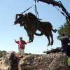 \'The Ancient One\'-- a bronze buffalo -- graces the entrance of Sugar Hill residential development just north of Arcadia Lake. Gino Miles, the sculptor, installs it Thursday. The statue is part of Edmond\'s citywide effort to place art in public rights of way. The $54,000 statue is funded by Sugar Hill developer Barry Rice, who is an Edmond attorney and former city councilman, with $20,000 coming from city funds. Community Photo By: Photo Provided Submitted By: Carol, Edmond