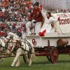 Boomer and Sooner pulls the Sooner Schooner for their final time during the first half of the college football game between the University of Oklahoma Sooners (OU) and the Oklahoma State University Cowboys (OSU) at the Gaylord Family-Memorial Stadium on Saturday, Nov. 24, 2007, in Norman, Okla. Photo By STEVE SISNEY, The Oklahoman