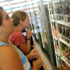 Sydney Rose, 11, and Katie Oestmann, 10, look at different sodas at Pops in Arcadia, Okla., Monday, August 4, 2008. BY MATT STRASEN, THE OKLAHOMAN