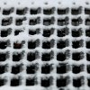 Snow and ice collect on a drainage grate Friday, Jan. 29 , 2010. Photo by Jim Beckel, The Oklahoman