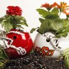 Photo - UINIVERSITY OF OKLAHOMA / OKLAHOMA STATE UNIVERSITY / OU / OSU / HELMET / FLOWERS / GARDEN / FLOWER POT: Illustration for spring football, photographed in the OPUBCO studio, Friday, April 11, 2008.. BY NATE BILLINGS, THE OKLAHOMAN ORG XMIT: KOD
