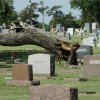 Tuesday\'s severe thunderstorm\'s damage is evident at the IOOF Cemetery on Wednesday, June 15, 2011, in Norman, Okla. Photo by Steve Sisney, The Oklahoman