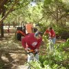 A record turnout made quick work of Saturday\'s workday at the Westwood Church of Christ in west Edmond. Members cleaned brush and old buildings from the property as well as painted the auditorium. Shown in the photo are Jim Bouye with the chain saw and Chris Horton and Larry Jacobs manning the wood chipper. The Westwood Church of Christ is located at 3100 E. Danforth in Edmond, OK. Community Photo By: Ray Vaughn Submitted By: Ray, Edmond