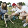 DONATE / DONATION: Mastiff foster mom Julie Moseley (left) shows mastiff