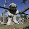 A stuffed toy hangs to dry from a damaged house at New Bataan township, Compostela Valley in southern Philippines Saturday Dec. 7, 2012. Search and rescue operations following typhoon Bopha that killed nearly 600 people in the southern Philippines have been hampered in part because many residents of this ravaged farming community are too stunned to assist recovery efforts, an official said Saturday. (AP Photo/Bullit Marquez)