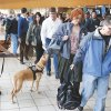 A TSA K-9 officer checks passengers\' carry-on luggage at Will Rogers World Airport in Oklahoma City. A new pre-screening program allows certain travelers to go through security without removing shoes, jackets and laptops. Steve Gooch - The Oklahoman