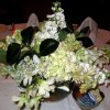 Beautiful flowers decorated the tables at the pre-nuptial brunch at the Oklahoma City Golf and Country Club. Hosts were Kathy and John Griffin, Linda and Ron James, Linda and Tom Klos, Bette and Jim MacKellar and Helen and Bill Wallace. (Photo by Helen Ford Wallace).