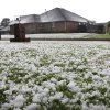 A yard in Midwest City is covered with hail stones after a severe hail storm hit areas of eastern Oklahoma County, including these homes in the Windsong neighborhood, near SE 15 and Westminster, late Sunday afternoon, May 16, 2010. Photo by Jim Beckel, The Oklahoman