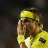 Photo - Spain's David Ferrer reacts during his semifinal loss to Serbia's Novak Djokovic at the Australian Open tennis championship in Melbourne, Australia, Thursday, Jan. 24, 2013. (AP Photo/Quinn Rooney,Pool)