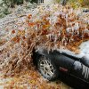 WINTER / COLD / WEATHER / ICE STORM / DAMAGE / AFTERMATH: A car is buried under an ice-covered tree that fell across Linn Avenue at NW 33 in Oklahoma City Monday, Dec. 10, 2007. By Paul B. Southerland, The Oklahoman ORG XMIT: KOD