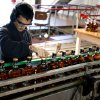 In this Aug. 22, 2013 photo, an employee inspects a bottle of Mac Pay whisky on a production line at the Ancap plant where Mac Pay is bottled in Montevideo, Uruguay. Inspired by the late President Jose Batlle y Ordonez, Uruguay's congress created in the 1930\'s Ancap, a state fuel and liquor monopoly that still refines imported oil and distills liquor at side-by-side plants in Montevideo. (AP Photo/Matilde Campodonico)
